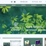 Создание интернет магазина Рослина Карпат
